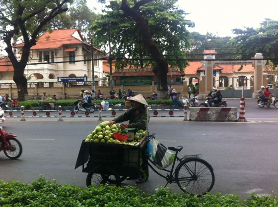 Why Vietnamese Rarely Innovate